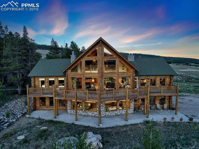 52516 Highway 9 Highway, Alma, CO 80420 (#8287141) :: Tommy Daly Home Team
