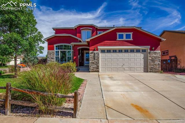 6834 Cool Spring Way, Colorado Springs, CO 80923 (#8287353) :: The Daniels Team
