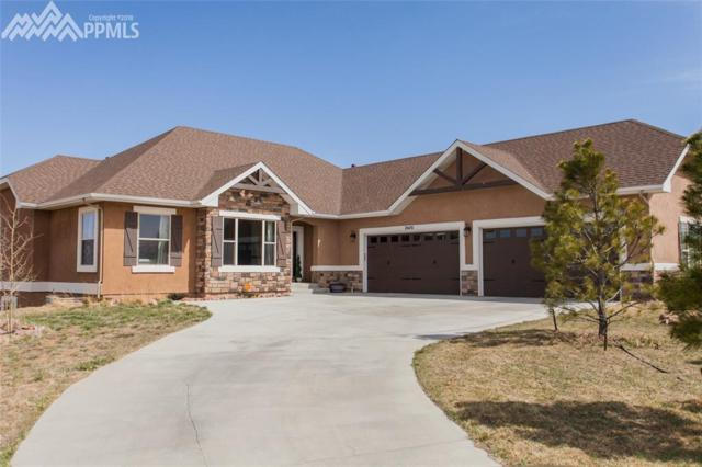 20431 Hunting Downs Way, Monument, CO 80132 (#8287527) :: The Treasure Davis Team