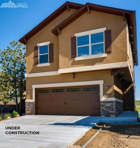 850 Redemption Point, Colorado Springs, CO 80905 (#8290675) :: 8z Real Estate