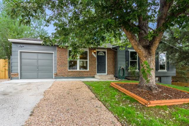 205 Henley Lane, Colorado Springs, CO 80916 (#8294284) :: Jason Daniels & Associates at RE/MAX Millennium