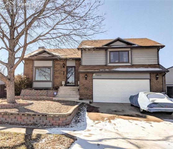 1655 Piros Drive, Colorado Springs, CO 80915 (#8297578) :: Harling Real Estate