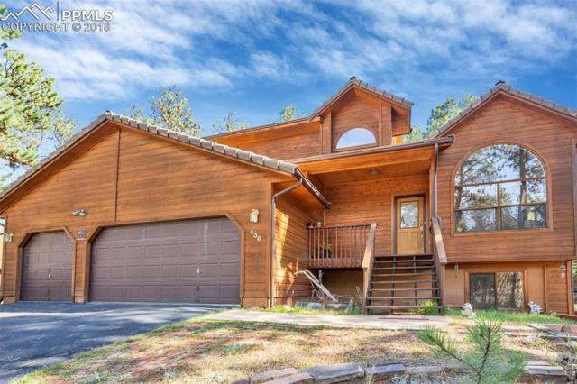 430 Pembrook Lane, Woodland Park, CO 80863 (#8297637) :: 8z Real Estate