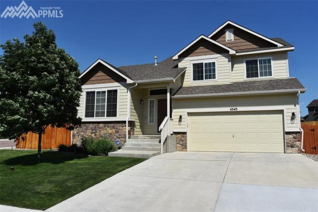 4545 Horse Tooth Drive, Colorado Springs, CO 80911 (#8297716) :: Fisk Team, RE/MAX Properties, Inc.