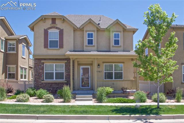 5565 Sunrise Mesa Drive, Colorado Springs, CO 80924 (#8297891) :: 8z Real Estate