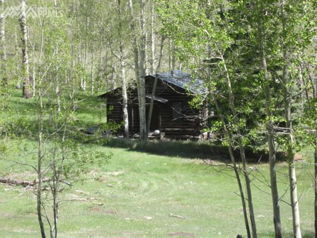 3439 County 88 Road, Guffey, CO 80820 (#8302084) :: 8z Real Estate