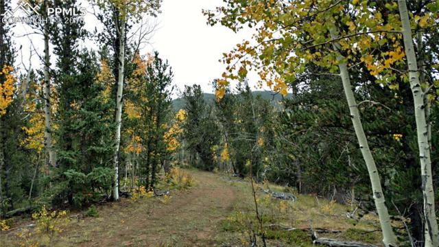 298 Brown Bear Drive, Cripple Creek, CO 80813 (#8307442) :: 8z Real Estate