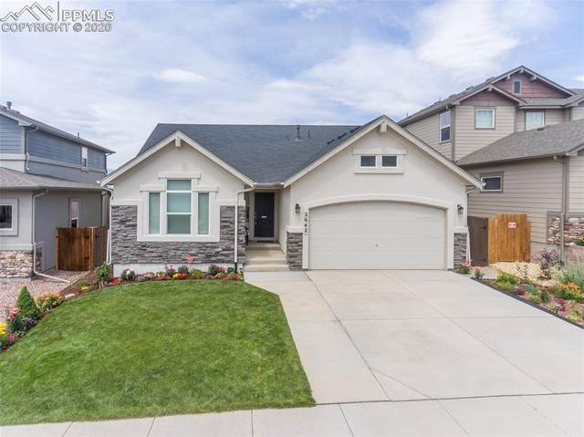 2642 Equine Court, Colorado Springs, CO 80922 (#8310429) :: Tommy Daly Home Team