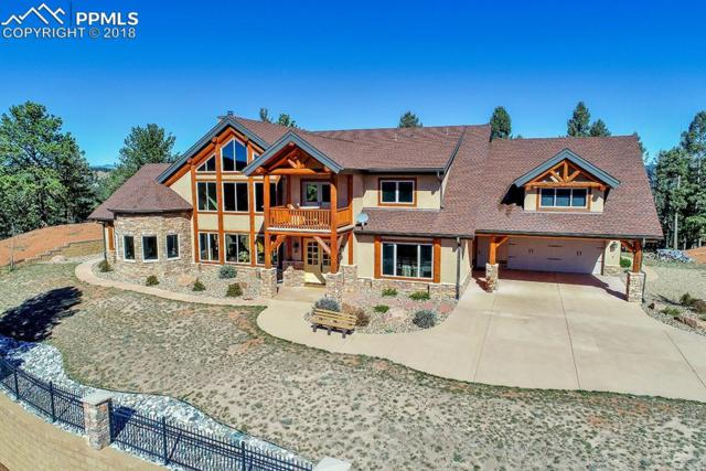 684 Kylie Heights Heights, Woodland Park, CO 80863 (#8311191) :: The Treasure Davis Team