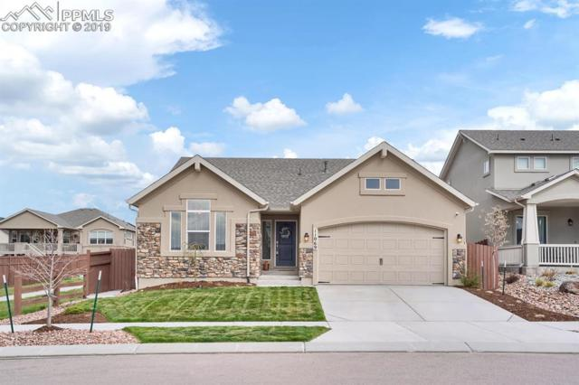 11069 Echo Canyon Drive, Colorado Springs, CO 80908 (#8311783) :: The Peak Properties Group