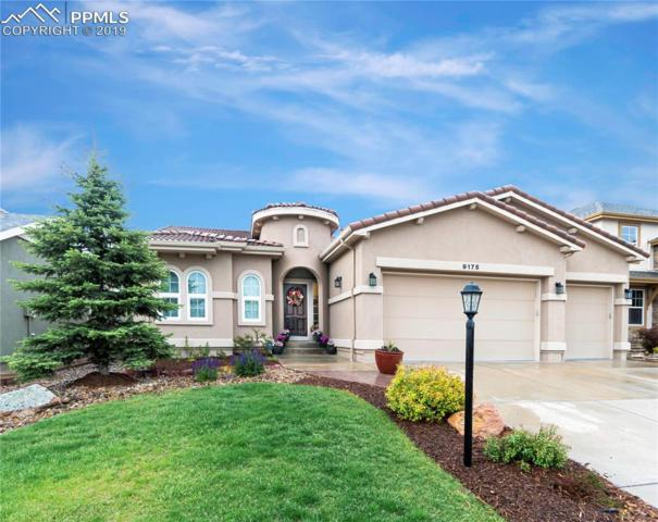 9175 Dome Rock Place, Colorado Springs, CO 80924 (#8312748) :: Tommy Daly Home Team