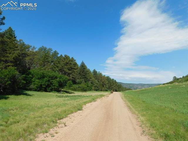 4518 Comanche Drive, Larkspur, CO 80118 (#8314889) :: Finch & Gable Real Estate Co.