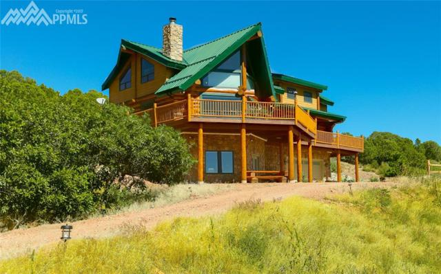 1491 Bear Springs Road, Walsenburg, CO 81089 (#8315481) :: 8z Real Estate
