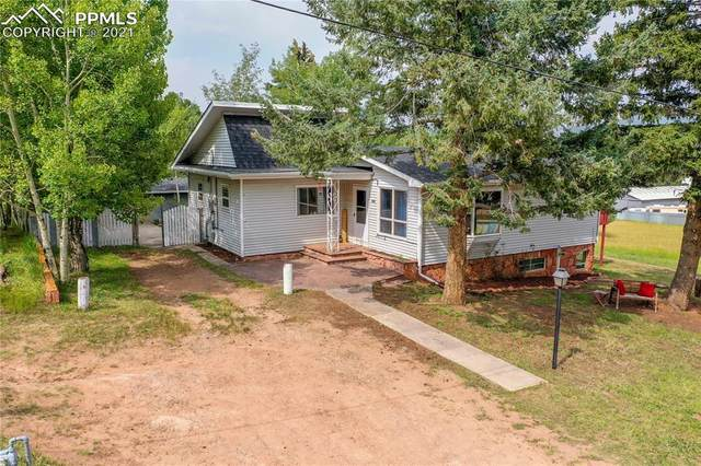 924 Spruce Haven Drive, Woodland Park, CO 80863 (#8316595) :: Tommy Daly Home Team