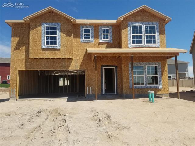 8533 Admiral Way, Colorado Springs, CO 80908 (#8316809) :: 8z Real Estate