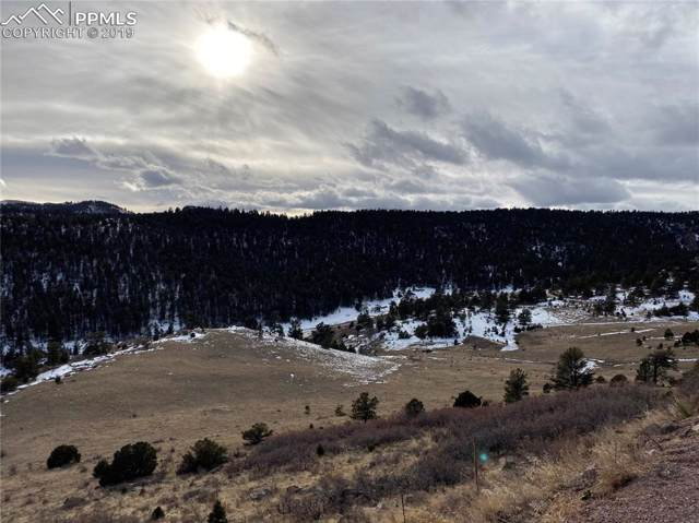 Pioneer Way, Canon City, CO 80808 (#8320494) :: The Daniels Team
