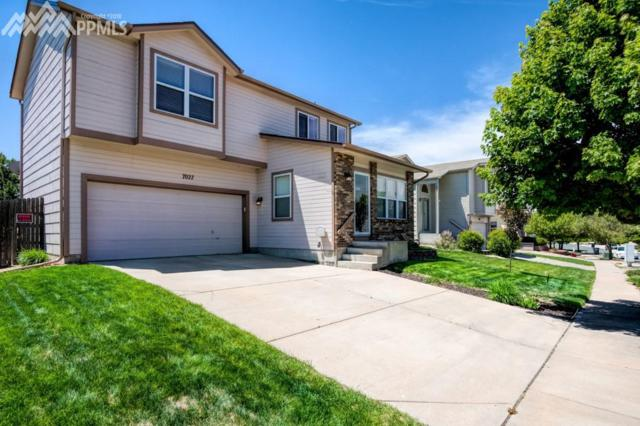 7027 Big Timber Drive, Colorado Springs, CO 80923 (#8322234) :: 8z Real Estate