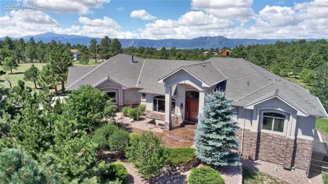 18910 Pagentry Place, Monument, CO 80132 (#8323551) :: 8z Real Estate