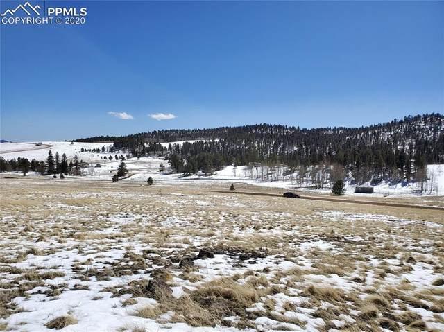 485 Alpine Meadows Lane, Lake George, CO 80827 (#8325393) :: 8z Real Estate