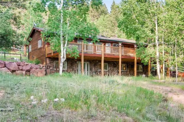 181 Woodland Valley Drive, Woodland Park, CO 80863 (#8330237) :: Action Team Realty