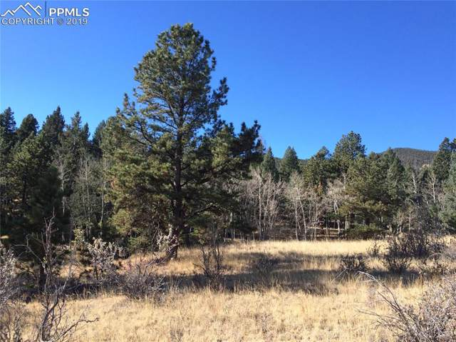 872 Pulver Road, Lake George, CO 80827 (#8331036) :: Perfect Properties powered by HomeTrackR