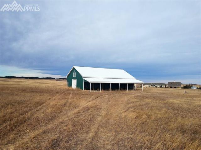 5772 Windridge Point, Colorado Springs, CO 80908 (#8332210) :: 8z Real Estate