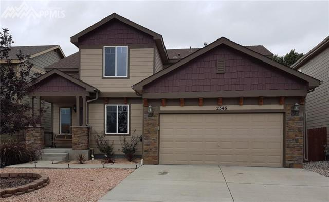 2346 Great Sky Road, Colorado Springs, CO 80915 (#8332559) :: 8z Real Estate