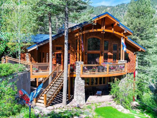 8215 Anemone Hill Road, Cascade, CO 80809 (#8333042) :: Jason Daniels & Associates at RE/MAX Millennium