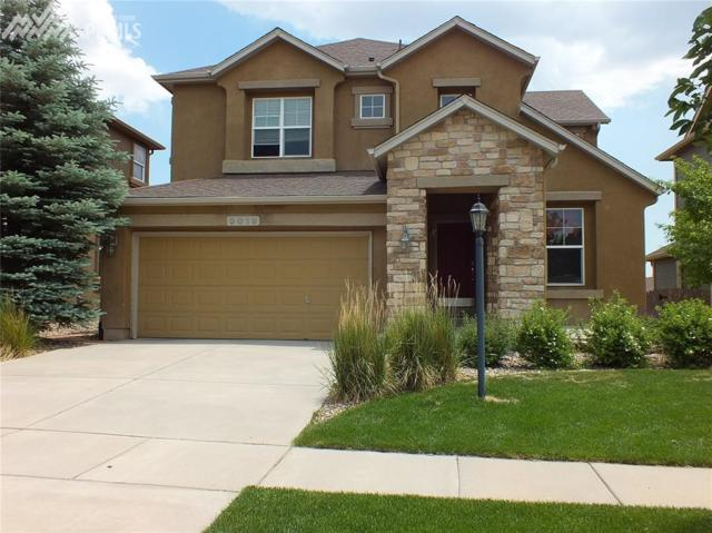 5019 Petrified Forest Trail, Colorado Springs, CO 80924 (#8335426) :: 8z Real Estate