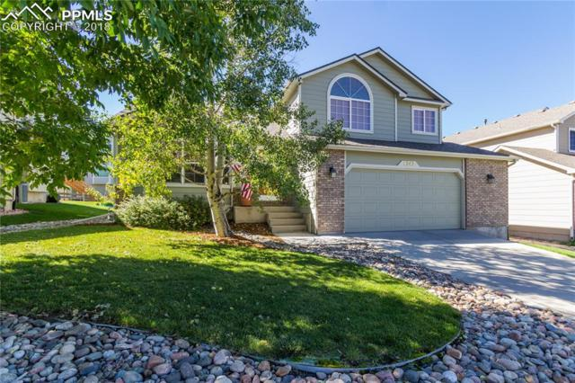 1343 Lookout Springs Drive, Colorado Springs, CO 80921 (#8341104) :: 8z Real Estate