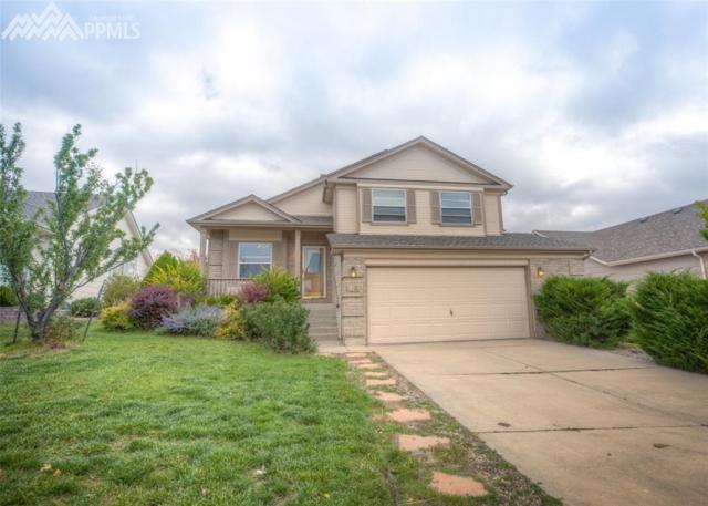 60 Pistol Creek Drive, Monument, CO 80132 (#8351427) :: 8z Real Estate