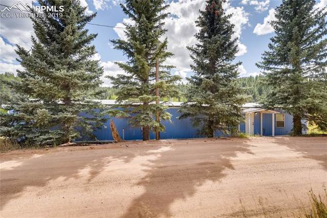 353 Shadow Lake Drive, Divide, CO 80814 (#8351849) :: Tommy Daly Home Team
