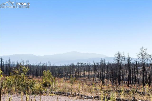 6425 Highline Place, Colorado Springs, CO 80908 (#8352474) :: Venterra Real Estate LLC