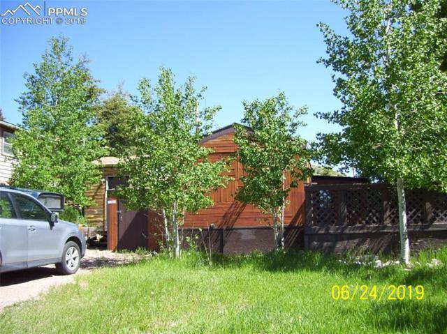 409 W Eaton Avenue, Cripple Creek, CO 80813 (#8353065) :: 8z Real Estate
