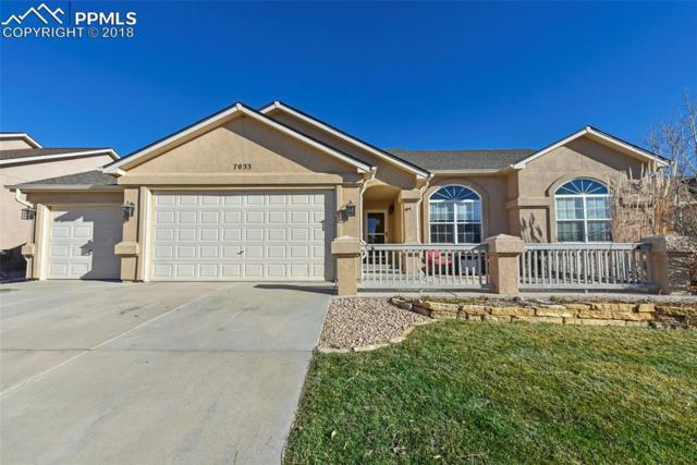 7033 Appletree Loop, Colorado Springs, CO 80925 (#8354699) :: 8z Real Estate