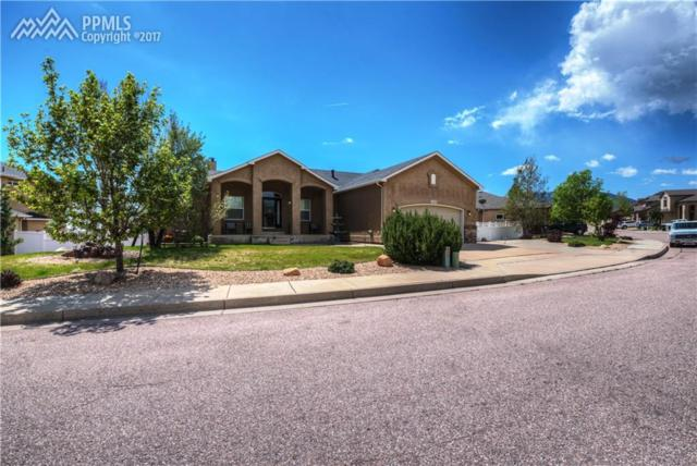 303 Gold Claim Terrace, Colorado Springs, CO 80905 (#8356072) :: CC Signature Group