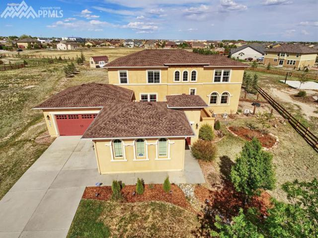 7365 Talimena Terrace, Peyton, CO 80831 (#8358909) :: 8z Real Estate