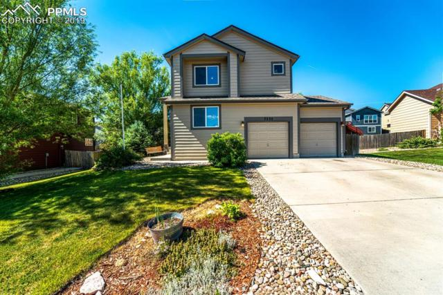 7335 Creekfront Drive, Fountain, CO 80817 (#8362303) :: Tommy Daly Home Team