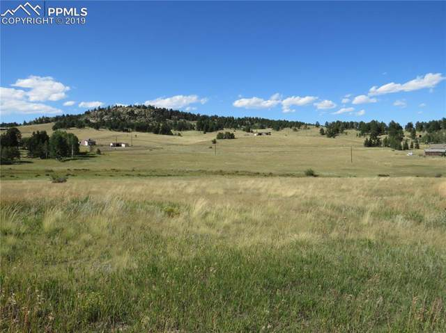 17 Forest Lane, Lake George, CO 80827 (#8363653) :: 8z Real Estate