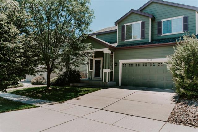 7235 Edgebrook Drive, Colorado Springs, CO 80922 (#8365306) :: Harling Real Estate