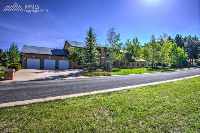 920 Heather Court, Woodland Park, CO 80863 (#8365353) :: 8z Real Estate