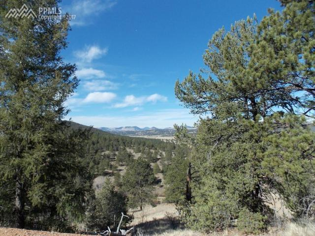 341 Big Rock Point, Cripple Creek, CO 80813 (#8365552) :: 8z Real Estate