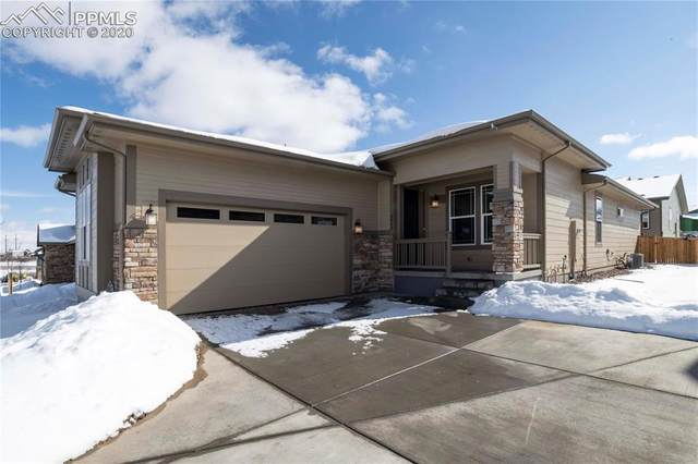 4048 Happy Hollow Drive, Castle Rock, CO 80104 (#8365740) :: Action Team Realty