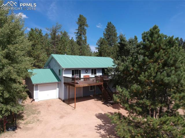 1596 County 512 Road, Divide, CO 80814 (#8366712) :: 8z Real Estate
