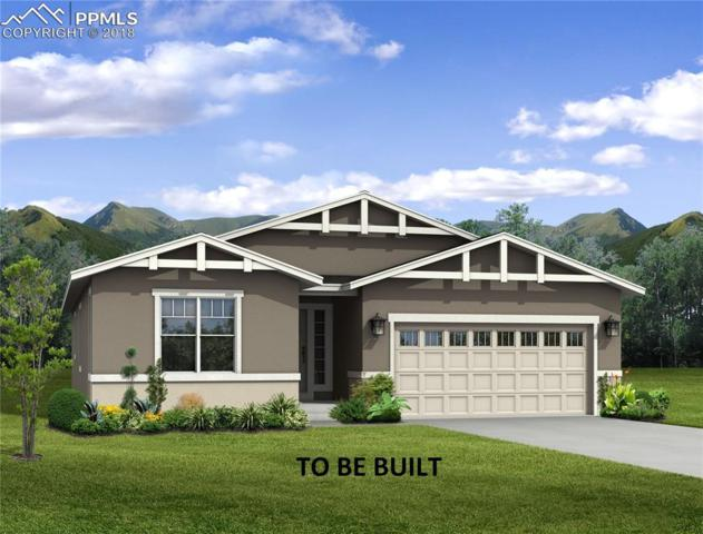 8126 Gilpin Peak Drive, Colorado Springs, CO 80924 (#8367199) :: The Hunstiger Team