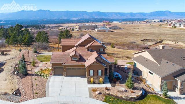 13060 Duckhorn Court, Colorado Springs, CO 80921 (#8367994) :: Jason Daniels & Associates at RE/MAX Millennium
