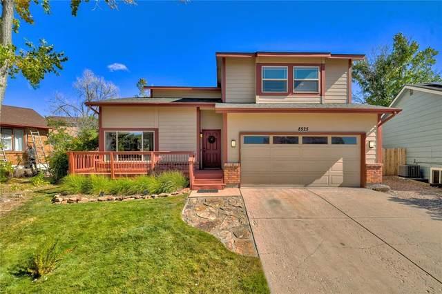 8525 Smoky Falls Court, Colorado Springs, CO 80920 (#8368897) :: The Kibler Group