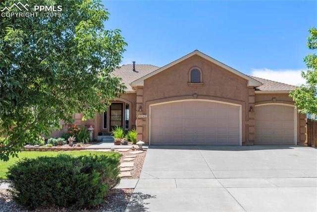 6242 Canyon Crest Loop, Colorado Springs, CO 80923 (#8370428) :: Action Team Realty