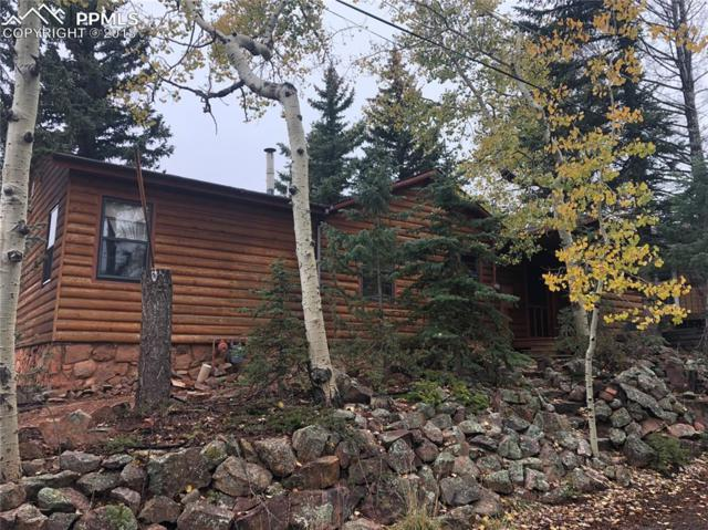 311 Dewell Road, Woodland Park, CO 80863 (#8377360) :: 8z Real Estate