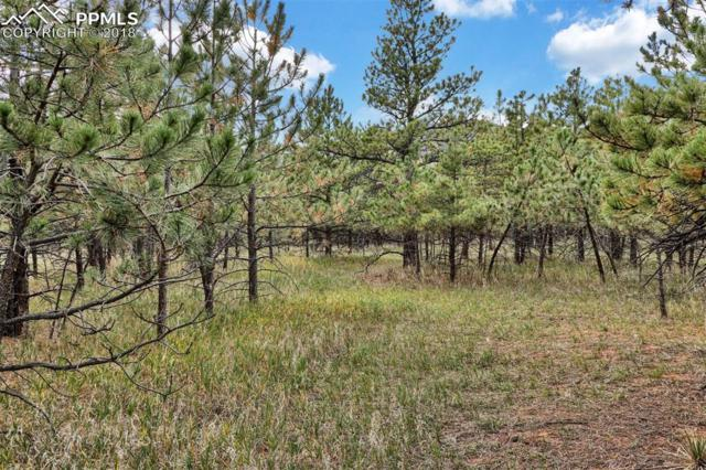 Lot 6 Stone View Road, Monument, CO 80132 (#8378736) :: Action Team Realty